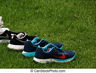 Blue Sports shoes on the green grass