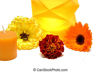 Burning candle in a paper lamp with flowers