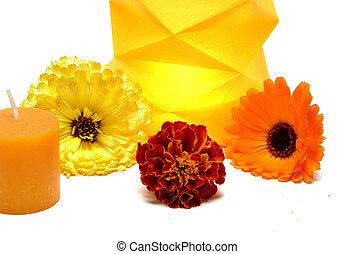 płonący, świeca, papier, Lampa, Kwiecie