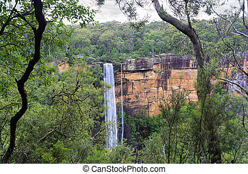 Australian bush view of Fitzory Falls - Australian bushland...