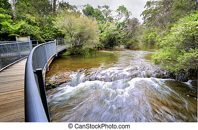 Fast flowing water at the approach to Fitzroy Falls...