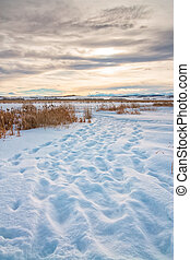 Snowy Footsteps at Dusk - Footsteps in the snow at dusk on a...