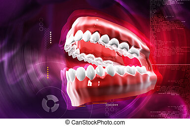 Teeth set - Digital illustration of Teeth set in colour...