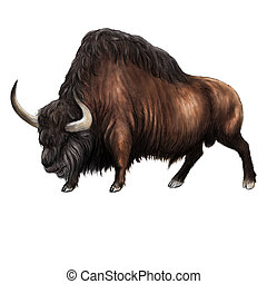Wygasły, step, bizon,