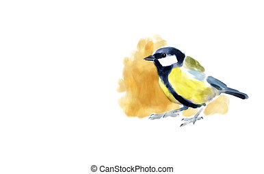 Great tit - Digital watercolor illustration of a great tit