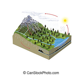 Water cycle - Digital illustration of water cycle