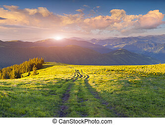 Colorful summer sunset in the Carpathian mountains Ukraine,...