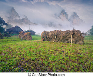 Haymaking in mountain village Foggy summer morning