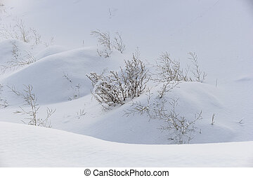 snowdrifts - winter landscape with deep white snowdrifts and...