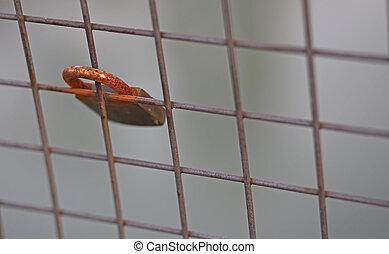iron rusty padlock above the bridge - great rusty padlock...