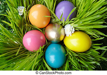 Colored eggs - Compositing of colorful Easter eggs