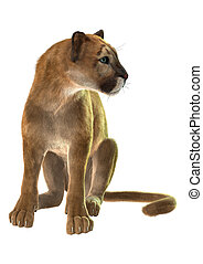 Puma - 3D digital render of a sitting puma, known as a...