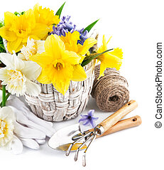 Spring flowers in basket with garden tools