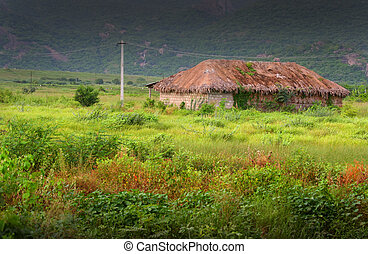 Hut In The Middle Of Fields