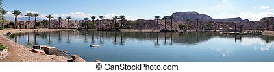 Timna oasis - Pond in Timna oasis near Elifaz, Israel...