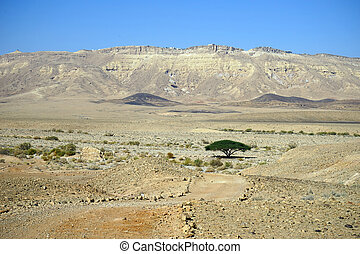 Mizpe Ramon - Crater and Mizpe Ramon in Negev desert, Israel...