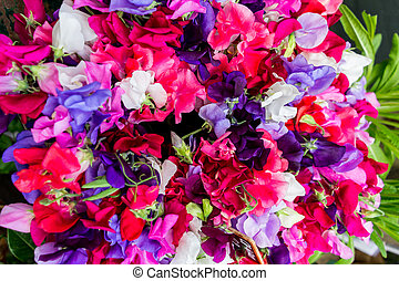 flowers for sale,