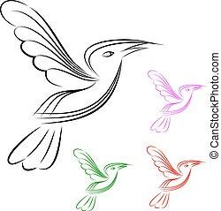 bird in white background