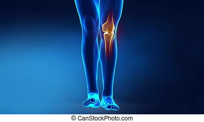 Pain in knee with therapeutic effects - 3D concept