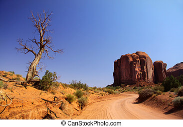 Desert driving - Dirt road through monument valley national...