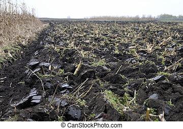 Plowed soil - Freshly plowed field near the village of...