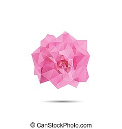 Pink rose abstract isolated on a white backgrounds