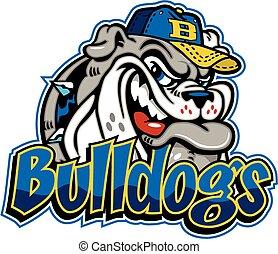 bulldogge, baseball, maskottchen,