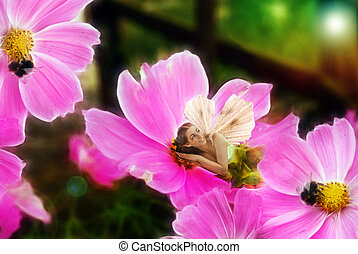 Happy Fairy laying on pink flower.