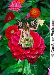 美麗, 仙女, 藏品, 蝴蝶