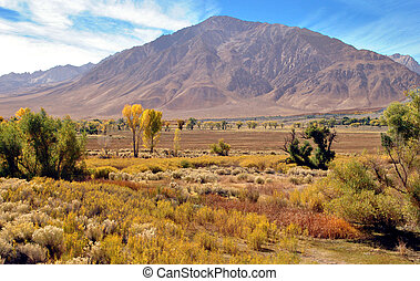 Eastern Sierra Nevada Minden NV USA - View of the Eastern...