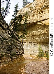 Canyon Walls - A creek winds its way through a narrow...