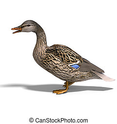 female duck mallard - 3D rendering with clipping path and...