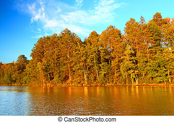 Northwoods Autumn Landscape Wisconsin - Beautiful foliage...