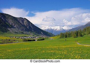 Engadin near St. Moritz