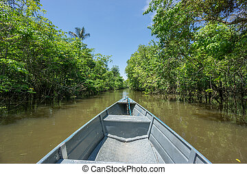Boat over canal in Rio Negro, amazon river, Brazil - Wide...
