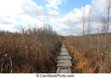 gangway, path, sky, lake, growth, spiritual, blue, journey,...