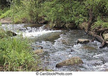 Mounatin River - A river running over rocks through a nature...