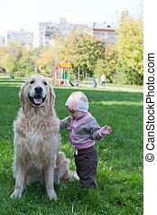 Little girl and dog of breed a golden retriever