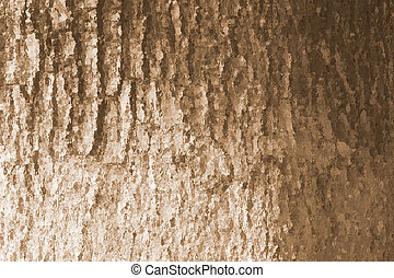 Glass effect Tree bark texture  background