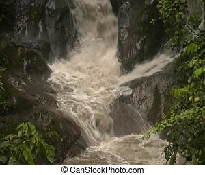 Mountain stream in Ecuador - In the foothills of the Andes...