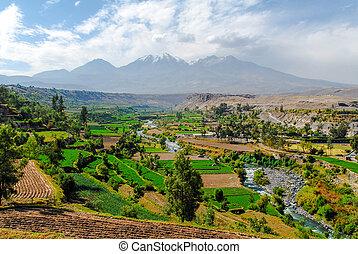 Inca Garden and Misti Volcano - Arequipa, Peru - Inca Garden...