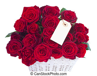 border of fresh crimson red  garden roses