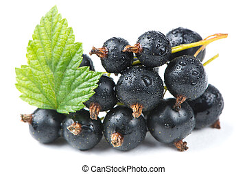 Blackcurrants with Green Leaf Isolated on White Background -...