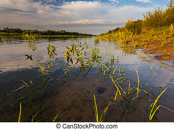 Beautiful summer water landscape in sunbeam. Ukraine