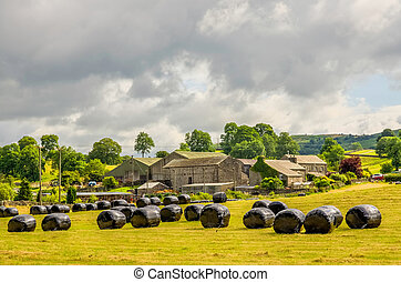 Rural scene in Cumbria - Scenic rural landscape with covered...