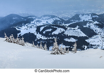 snowstorm in Piatra Craiului Mountains - a beautiful...