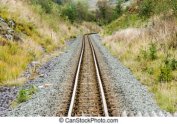 Narrow Gauge Railway Track