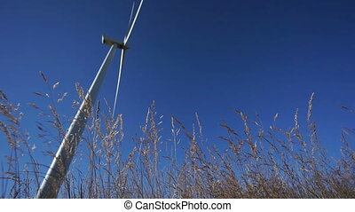 Rotating wind turbine and plants, focus on plants - Modern...