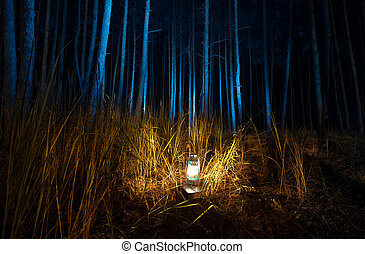 dark forest at night lit by old gas lamp - Beautiful view of...
