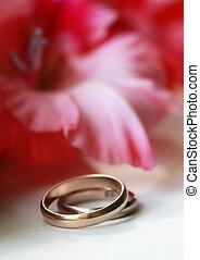 Wedding ring - Simple plot. Red flower (hybridus hort) and...